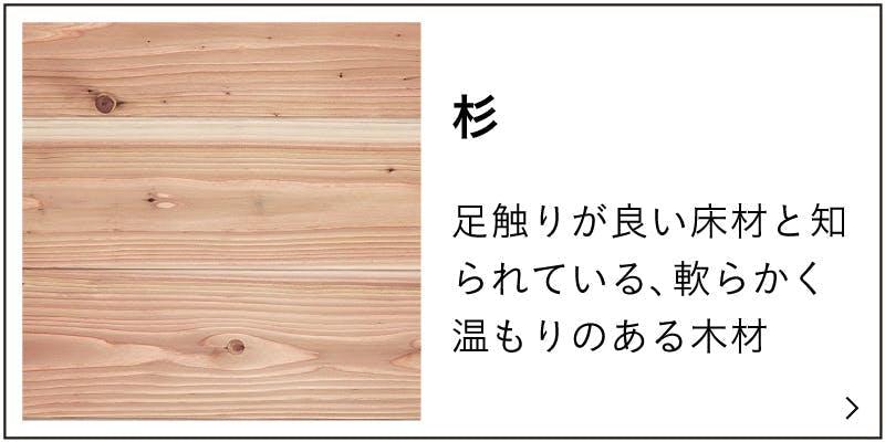 杉の特徴説明バナー